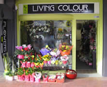 Living Colour Florist shop front