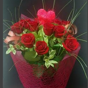 Red Roses - One Variety of Flower